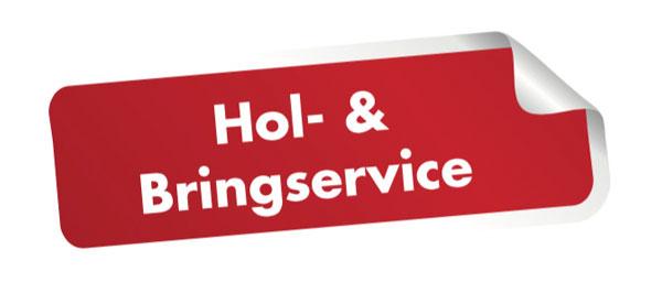 start-hol-bring-service